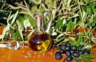 سوسة: تعرض عدد من ضيعات الزيتون إلى سرقة محصولها والاضرار بأشجارها في ظل توقعات بصابة قياسية